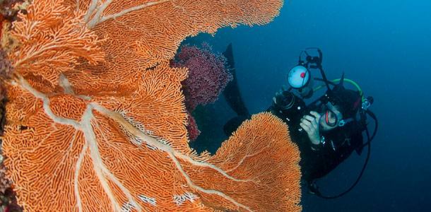 PADI Advanced Open Water Diver Course Shah Alam Glenmarie - Viking Scuba